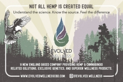 Evolved-Wellness-Ad